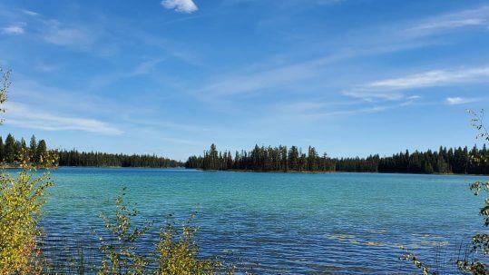 Moose Valley_Stephanie L